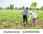 agronomist with farmer at... | Shutterstock . vector #1204850986