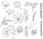 digital sketch doodle clipart | Shutterstock . vector #1204871203