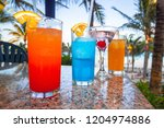 tropical drinks at the... | Shutterstock . vector #1204974886