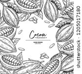 cocoa frame. vector superfood... | Shutterstock .eps vector #1205017180