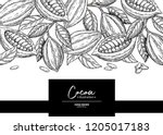 cocoa frame. vector superfood... | Shutterstock .eps vector #1205017183