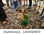 cu chi  socialist republic of... | Shutterstock . vector #1205020870