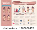 vector illustration set with... | Shutterstock .eps vector #1205030476