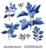 floral and leaves elements in... | Shutterstock . vector #1205063620