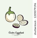 eggplant   hand drawn... | Shutterstock .eps vector #1205079196