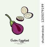 eggplant   hand drawn... | Shutterstock .eps vector #1205079199
