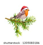 bird in red holiday hat on... | Shutterstock . vector #1205083186