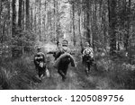 re enactors dressed as german... | Shutterstock . vector #1205089756