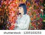 beautiful girl in the autumn... | Shutterstock . vector #1205103253