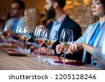 sommeliers at the winery | Shutterstock . vector #1205128246