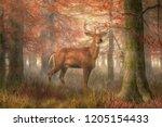 a buck stands near the viewer.... | Shutterstock . vector #1205154433