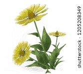 2d illustration. decorative... | Shutterstock . vector #1205208349