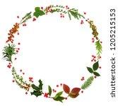 winter and christmas minimalist ... | Shutterstock . vector #1205215153