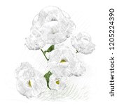 2d illustration. decorative...   Shutterstock . vector #1205224390