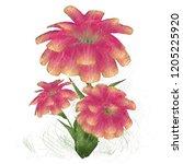 2d illustration. decorative... | Shutterstock . vector #1205225920