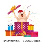 funny pig jumps out of the gift ...   Shutterstock .eps vector #1205304886