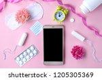 tampon  feminine  sanitary pads ... | Shutterstock . vector #1205305369
