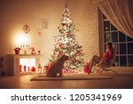 woman at christmas   | Shutterstock . vector #1205341969