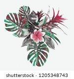 tropical plant. watercolor... | Shutterstock . vector #1205348743
