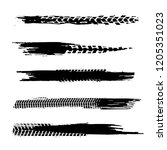 automobile tire tracks vector... | Shutterstock .eps vector #1205351023