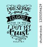 hand lettering preserve me o... | Shutterstock .eps vector #1205354629
