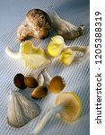 a selection of edible mushrooms ... | Shutterstock . vector #1205388319