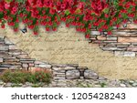 3d wallpaper design with floral ...   Shutterstock . vector #1205428243
