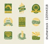 wheat labels and badges. vector ... | Shutterstock .eps vector #120544318