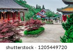 buddhist temple with colorful... | Shutterstock . vector #1205449720