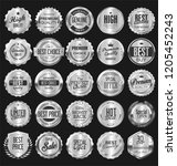 silver retro vintage badges and ... | Shutterstock .eps vector #1205452243