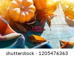 thanksgiving with pumpkins ... | Shutterstock . vector #1205476363