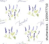 seamless with lavender herbs... | Shutterstock .eps vector #1205477710