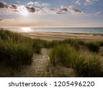 Sand Path Within Marram Grass...