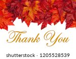 fall time thank you message... | Shutterstock . vector #1205528539