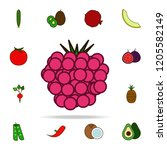 currant colored icon. fruit... | Shutterstock .eps vector #1205582149