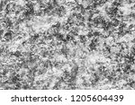 silver textured abstract... | Shutterstock . vector #1205604439