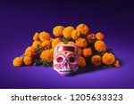 high contrast image of a sugar... | Shutterstock . vector #1205633323