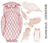 group of owls   Shutterstock .eps vector #120565408