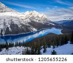 view of peyto lake in banff...   Shutterstock . vector #1205655226