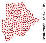 collage map of botswana... | Shutterstock .eps vector #1205673286