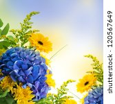 Stock photo bouquet from blue hydrangeas and yellow asters a flower background 120567649