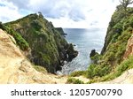 rough coast on pirate island | Shutterstock . vector #1205700790