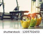kettlebell workout fitness... | Shutterstock . vector #1205702653