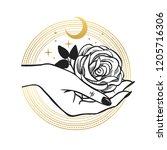 rose in hand. vector hand drawn ...   Shutterstock .eps vector #1205716306