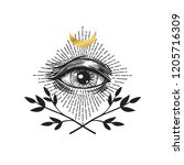 masonic symbol. seeing eye.... | Shutterstock .eps vector #1205716309