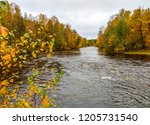 autumn forest river view.... | Shutterstock . vector #1205731540