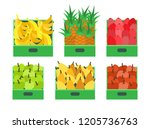 fruit and vegetables store food ... | Shutterstock .eps vector #1205736763