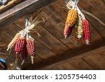 Rare Varieties Of Corn Cob....