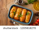 traditional stuffed cabbage... | Shutterstock . vector #1205818270