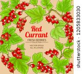 red currant frame | Shutterstock .eps vector #1205833030